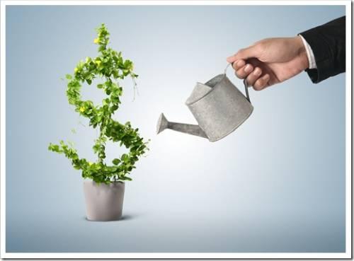 Поиск стартового капитала и оптимального проекта для входа