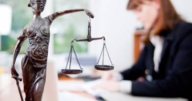 Популярные виды юридических услуг