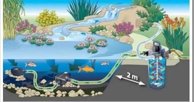Что нужно для оснащения небольшого водоема?