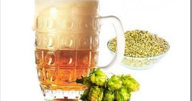 Светлый эль — пиво с оригинальным вкусом и ароматом