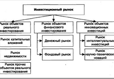 Суть инвестиций, роль государства, инвестиционный рынок в России и постсоветских странах