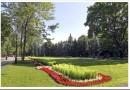 Как выполнялась реализация проекта Народного парка «Центральный» во Внуково