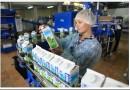 Какие сейчас требования к маркировке молока и молочной продукции