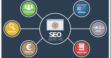 Как делается SEO продвижение сайтов
