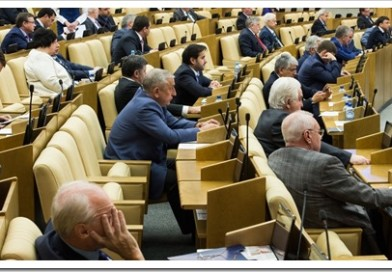 Чем занимаются депутаты государственной думы РФ