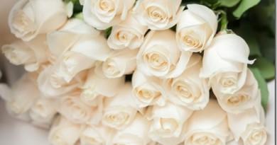 Как собрать красивый букет из белых роз