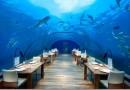 Уникальные рестораны мира, которые стоит посетить